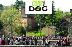 Corri Dog - Bergamo