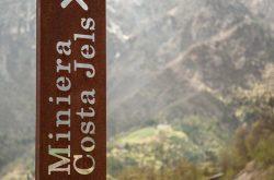 Visita Guidata alla Miniera Costa Jels - Gorno