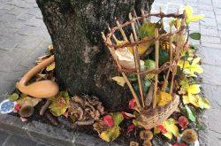 Festa delle Castagne - Oltre il Colle