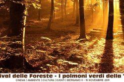 Festival delle Foreste - Bergamo