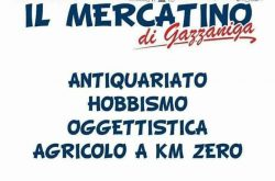 Mercatino Antiquariato e Hobbisti - Gazzaniga