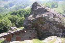 Castagnata Osservatorio Faunistico – Valbondione